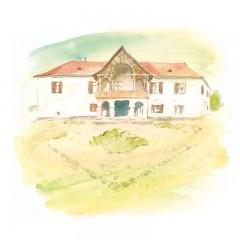 Postcard Csillag István - Daniel Castle from Tălișoara